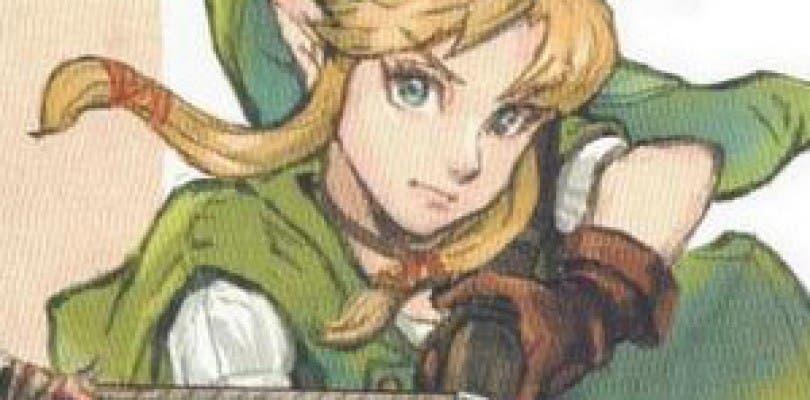Así podría haber sido Linkle, la versión femenina de Link en Hyrule Warriors