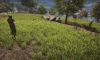 Nvidia prepara sus controladores para FarCry 4