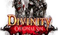 Divinity: Original Sin tendrá traducción al español gracias a la comunidad