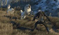 Nuevas capturas de The Witcher 3: Wild Hunt a 4k