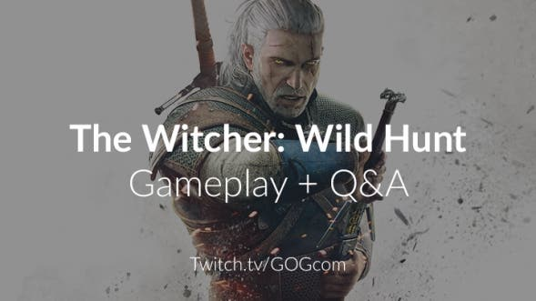 the-witcher-qa
