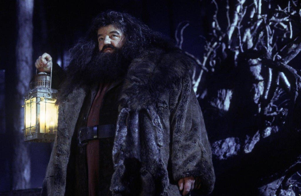 Harry potter Hagrid