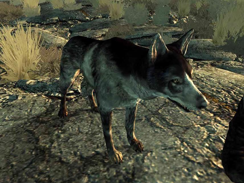 Albondiga Fallout 3