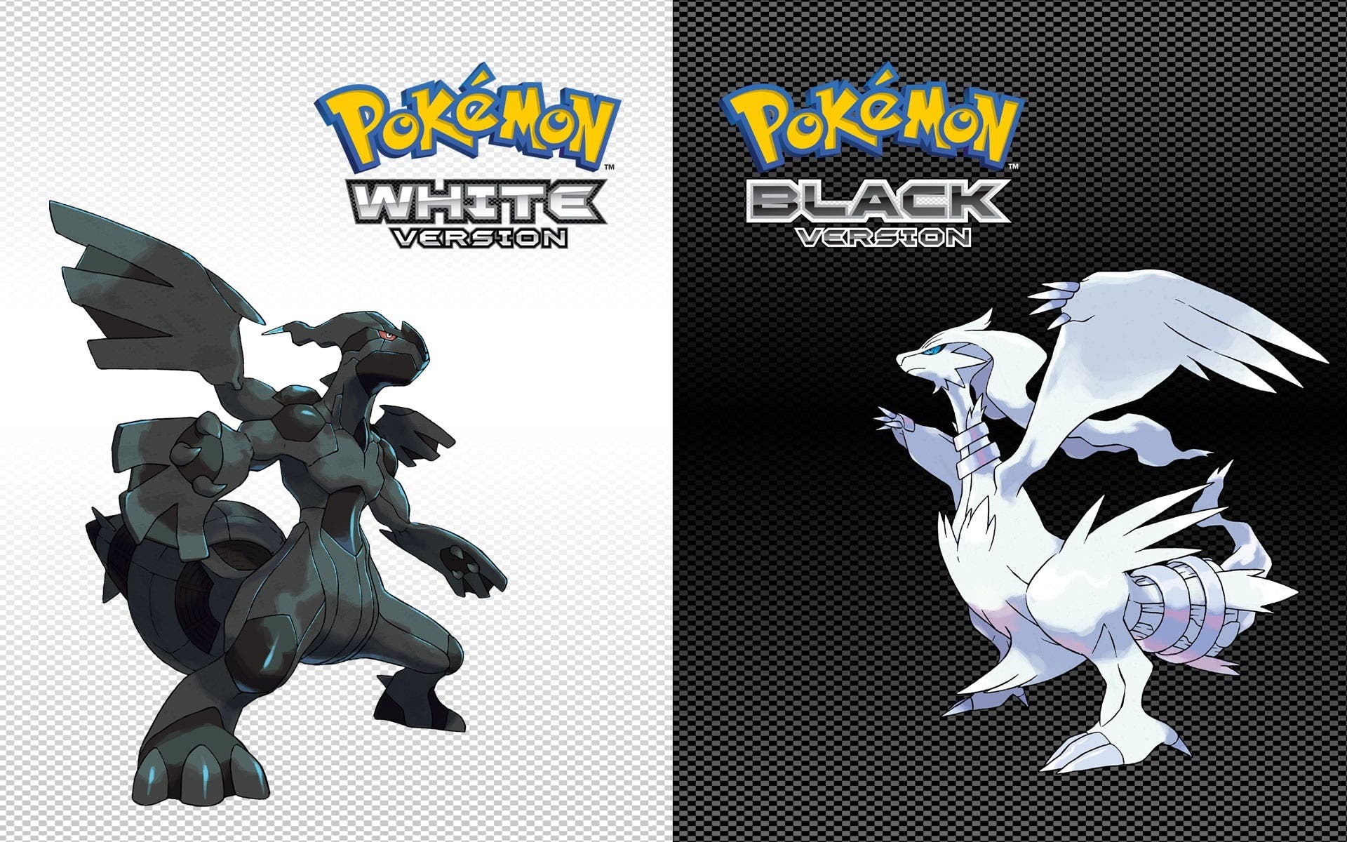 pokemon-black-02