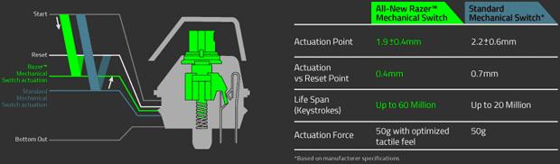 Razer-Green-diagrama
