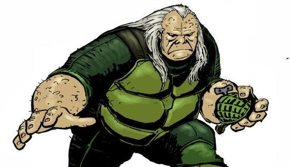 the turtle the flash