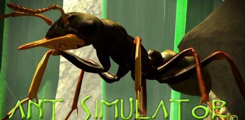 El dinero del crowdfunding de Ant Simulator se destinó a fiestas y strippers