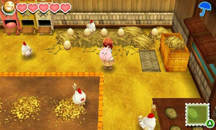 story-of-seasons-chicken