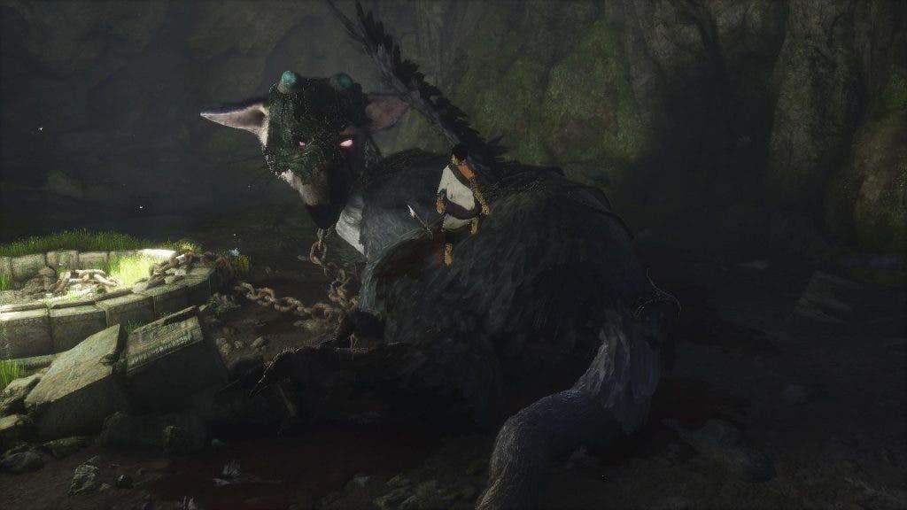 the last guardian trico herido