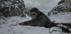 Las primeras críticas alaban La Guerra del Planeta de los Simios