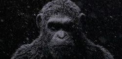 Anunciado El Planeta de los Simios: Última Frontera para PC, PS4 y One