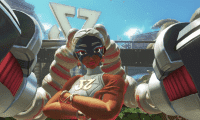 Twintelle ARMS