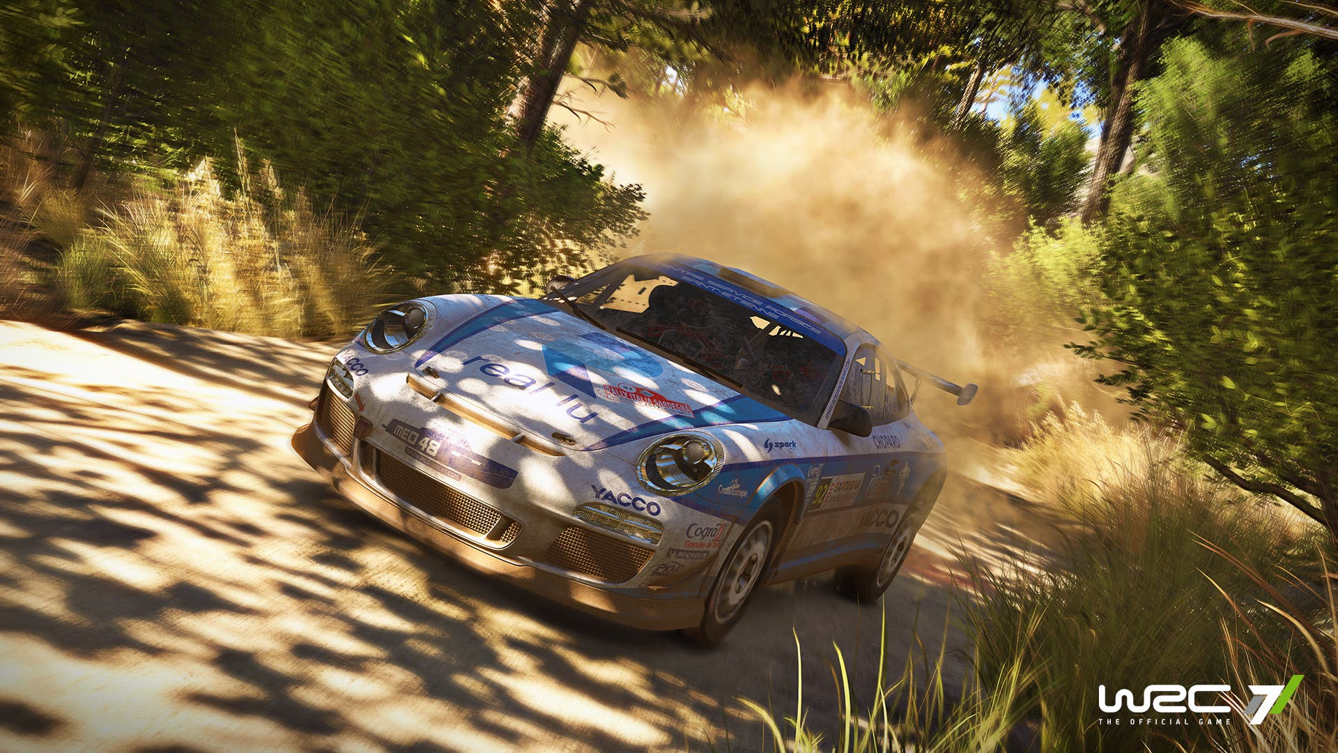 wrc 7 picture 4