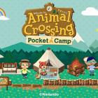Animal Crossing: Pocket Camp areajugones