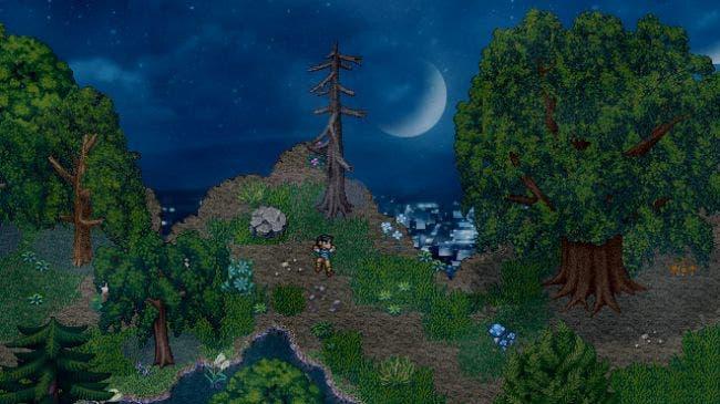 Imagen de Finding Paradise recibe un tráiler para acompañar su lanzamiento