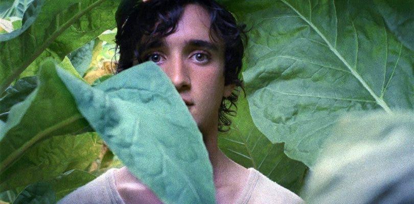 Netflix pesca dos de las películas ganadoras del último Festival de Cannes