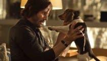 El rodaje de John Wick 3 fue un criadero de perros asesinos