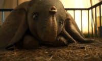 El nuevo tráiler internacional de Dumbo es un ataque directo al corazón