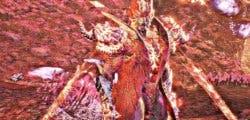 Cómo desbloquear el Devil Trigger infinito en Devil May Cry V