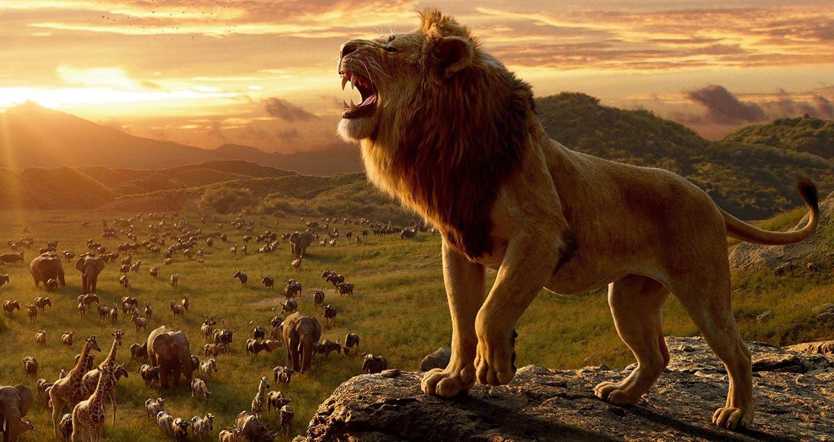 Imagen de Crítica de El Rey León: Un rugido directo al corazón