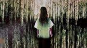 Imagen de La novela La chica que amaba a Tom Gordon, de Stephen King, será adaptada a película