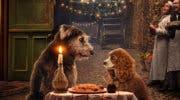Imagen de La dama y el vagabundo, Noelle, High School Musical: Así son los primeros pósteres de la D23