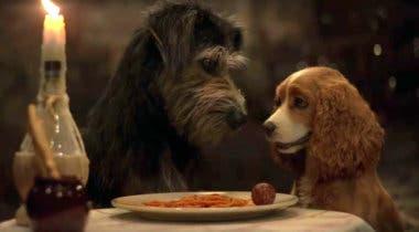 Imagen de La dama y el vagabundo: primer tráiler oficial de la nueva película de Disney+