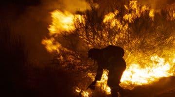 Imagen de Lo Que Arde, ganadora del jurado del Festival de Cannes, llega con un emotivo tráiler