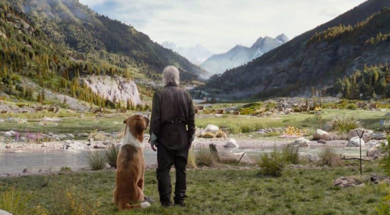 Imagen de La supervivencia de un perro y Harrison Ford se exhibe en el primer tráiler de Call of the Wild