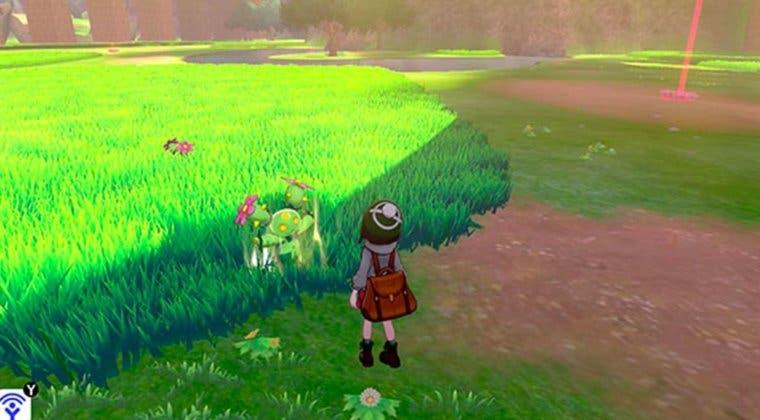 Imagen de Venden Pokémon piratas para Pokémon Espada y Escudo en eBay