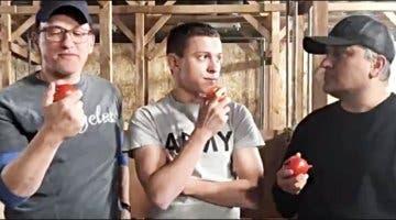 Imagen de Vengadores Endgame: Tom Holland celebra su victoria en los premios de Rotten Tomatoes con este vídeo