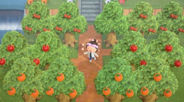Imagen de Animal Crossing: New Horizons - Guía de frutas, precios y cómo conseguirlas