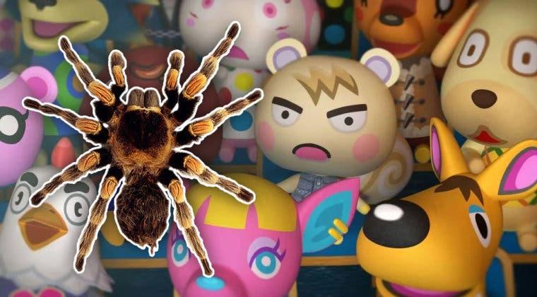 Imagen de Animal Crossing: New Horizons - Truco para hacer aparecer más tarántulas