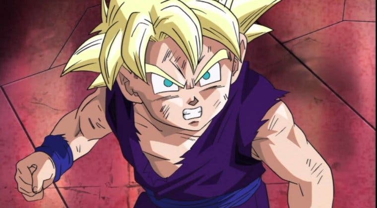 Imagen de El material nunca utilizado de Dragon Ball Z