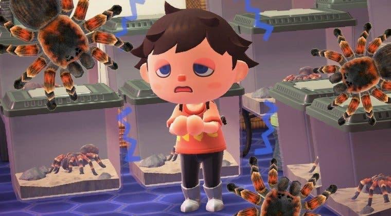 Imagen de Las valiosas tarántulas desaparecerán pronto de Animal Crossing: New Horizons