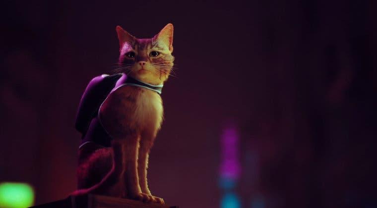 Imagen de Stray también llegará a PS4 y luce un primer gran gameplay pero retrasa su lanzamiento