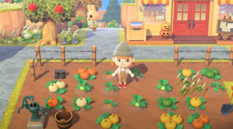 Imagen de Notas del parche y cambios de la actualización de otoño (1.5.0) de Animal Crossing: New Horizons