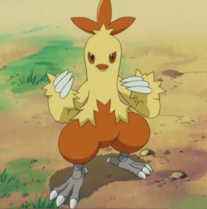 Combusken Pokémon inicial
