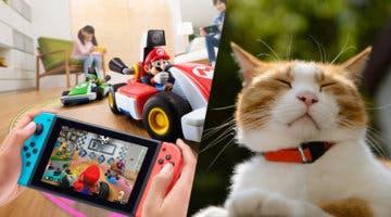 Imagen de Mario Kart Live: Home Circuit y su divertido  'problema' con los gatos se viralizan