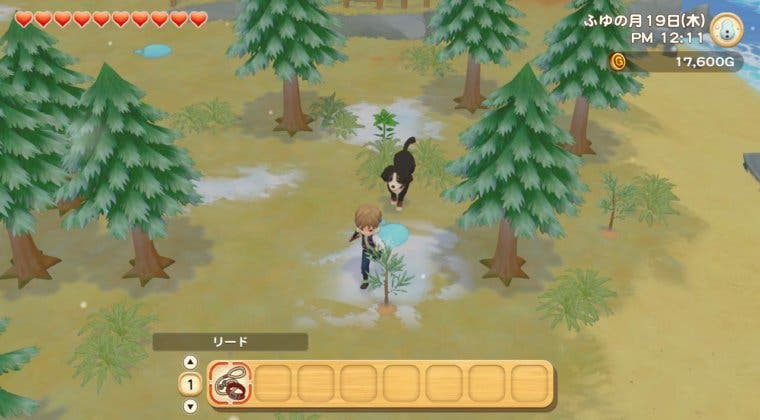 Imagen de Story of Seasons: Pioneers of Olive Town contará con un Pase de Expansión
