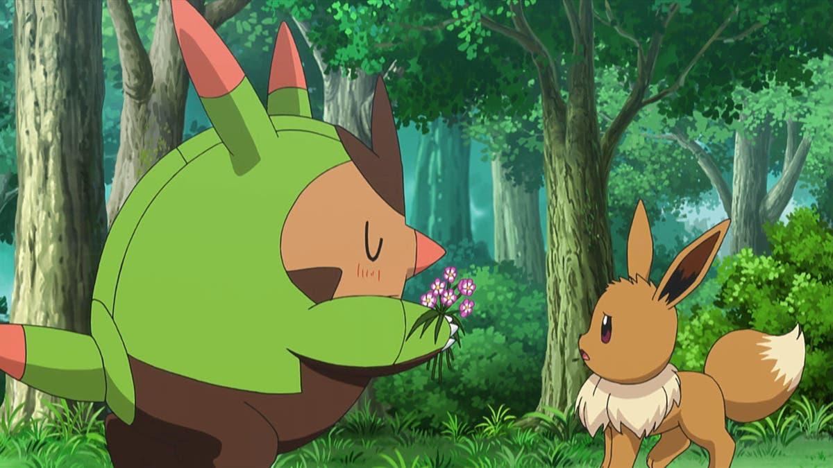 Quilladin Eevee Pokemon