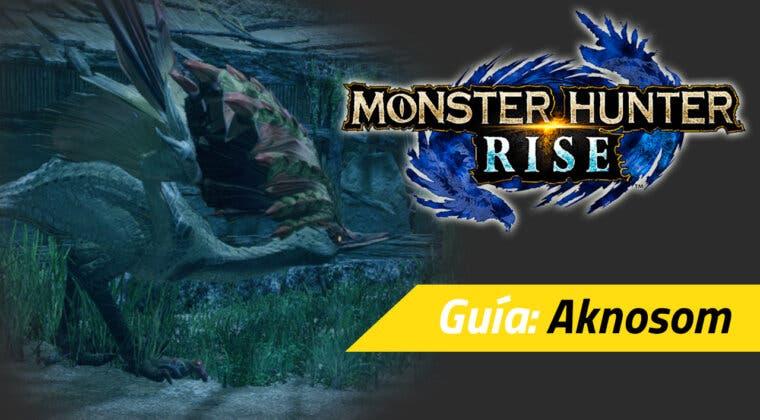 Imagen de Guía Monster Hunter Rise - Cómo cazar al Aknosom: debilidades, materiales rango alto y más