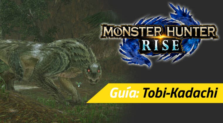 Imagen de Guía Monster Hunter Rise - Cómo derrotar al Tobi-Kadachi: debilidades, materiales rango alto y más