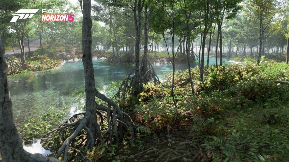 bioma de pantano fh5 02 16x9 wm
